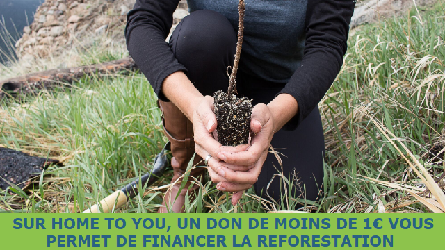 Home to you s'engage dans la reforestation