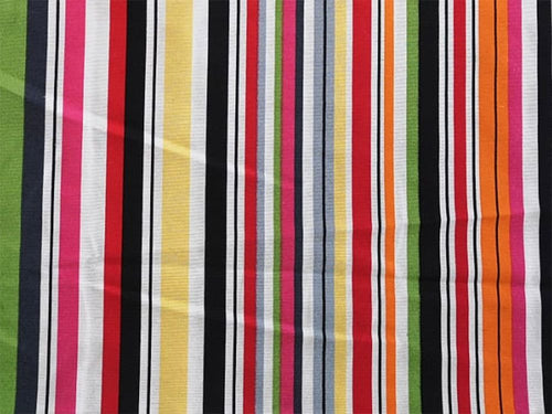 Multi Stripe Printed Canvas