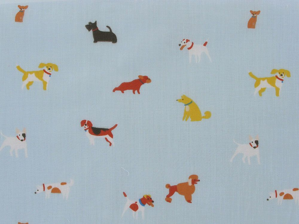 Doggy Playtime Polycotton Print, Sky
