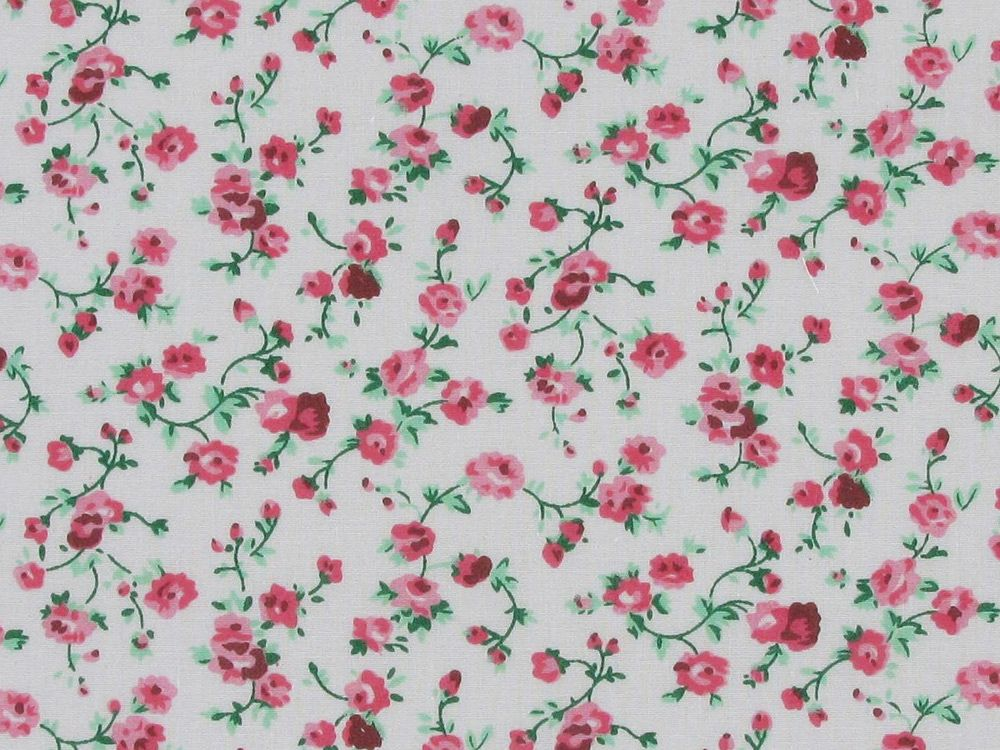 Chatsworth Garden Polycotton Print, Pink and White