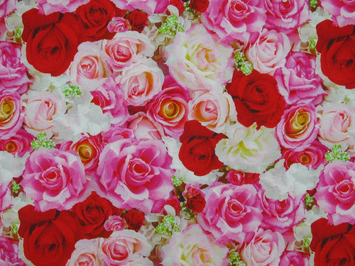 Rose Bunch Cotton Jersey