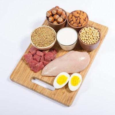 protein availability