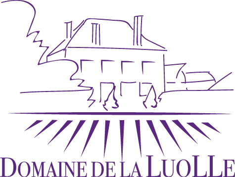 Domaine de la Luolle Cremant de Bourgogne - Burgundy, France - SAVE 20% (available December 2019)