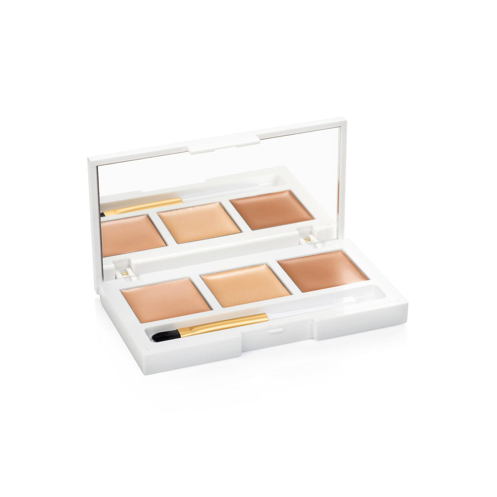 Hide & Highlight High Pigment Coverage Natural Illuminator