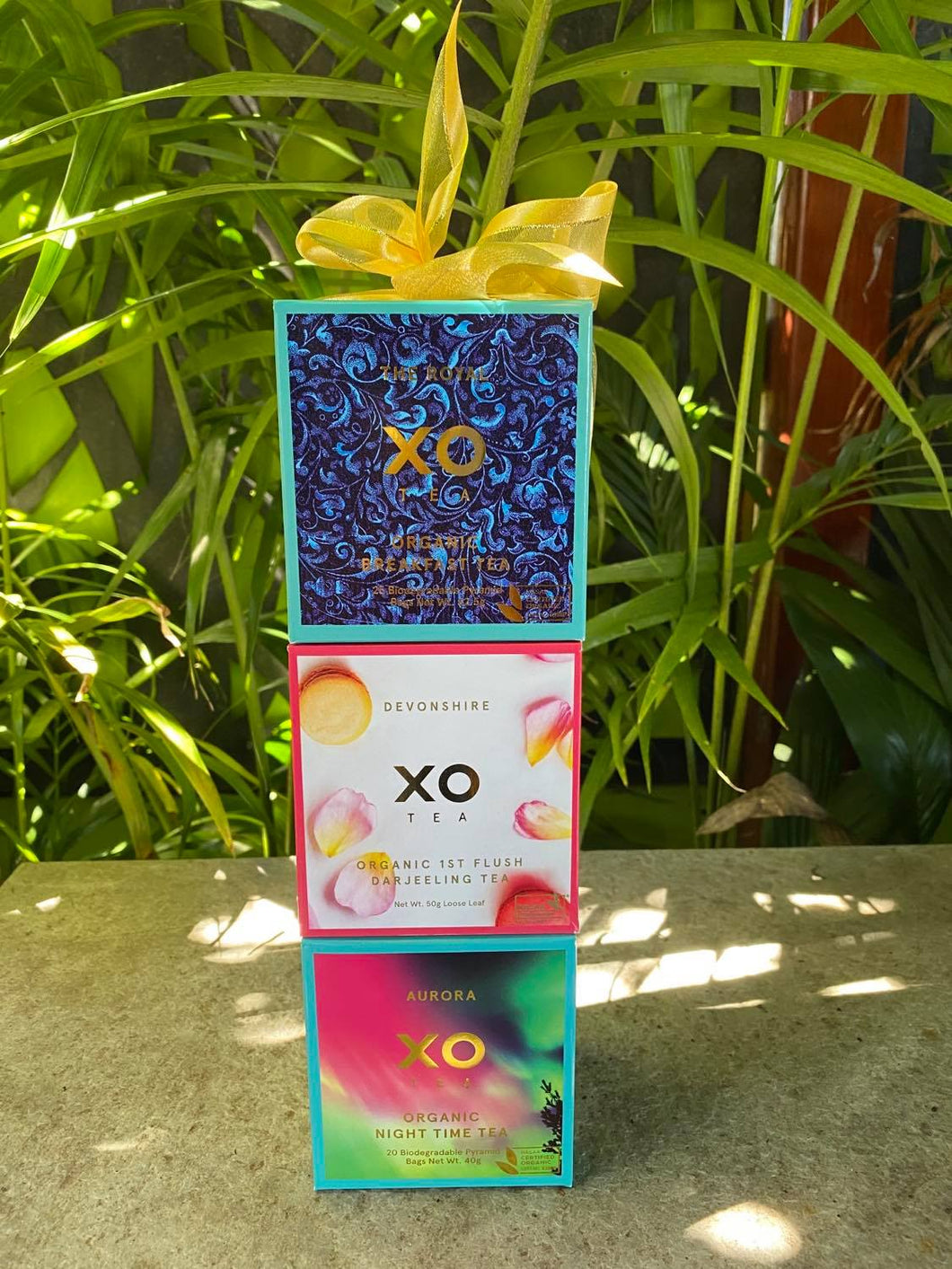 XO TEA Gift Trio
