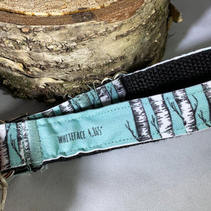 Pure Northern Dog Collar