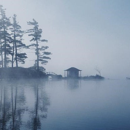 Image from Barry Lobdell photo card of the Teahouse at White Pine, gray, misty and ethereal with water in the foreground, tree and teahouse in background with trees reflected in the hazy water