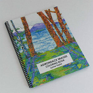 Book cover featuring colorful impressionist view of Adirondack lake and mountains