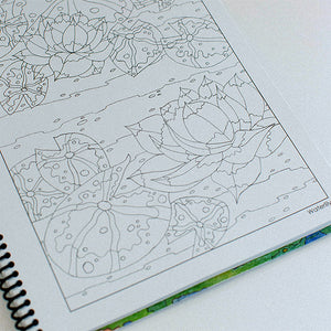 Adirondack Images Coloring Book- Lynne Taylor