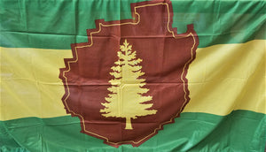 Close-up of Adirondack Park Flag with two green stripes--one top, one bottom. Middle third has a yellow stripe. In the center of these stripes is a brown outline of the Adirondack Park with a yellow evergreen in the center.