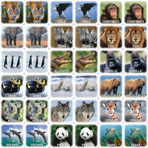 Thumbnail photos of animal game cards in pairs.