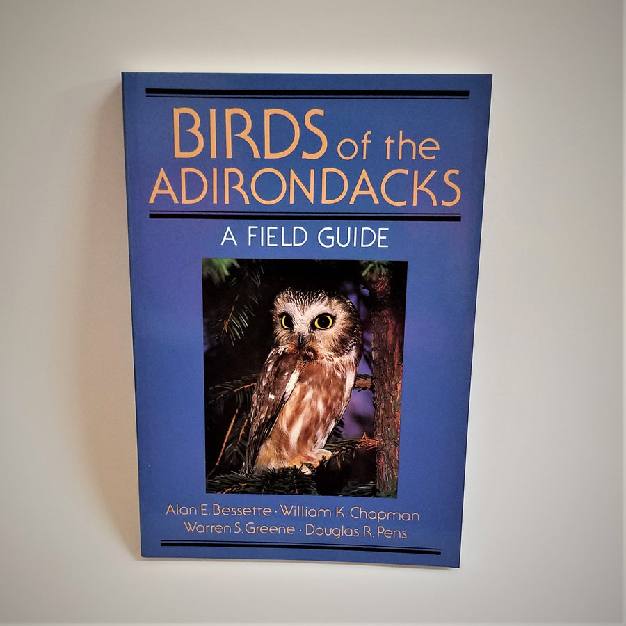 Blue book cover with a color photo of a Northern Saw-Whet Owl  perching on a tree branch centered after the book title