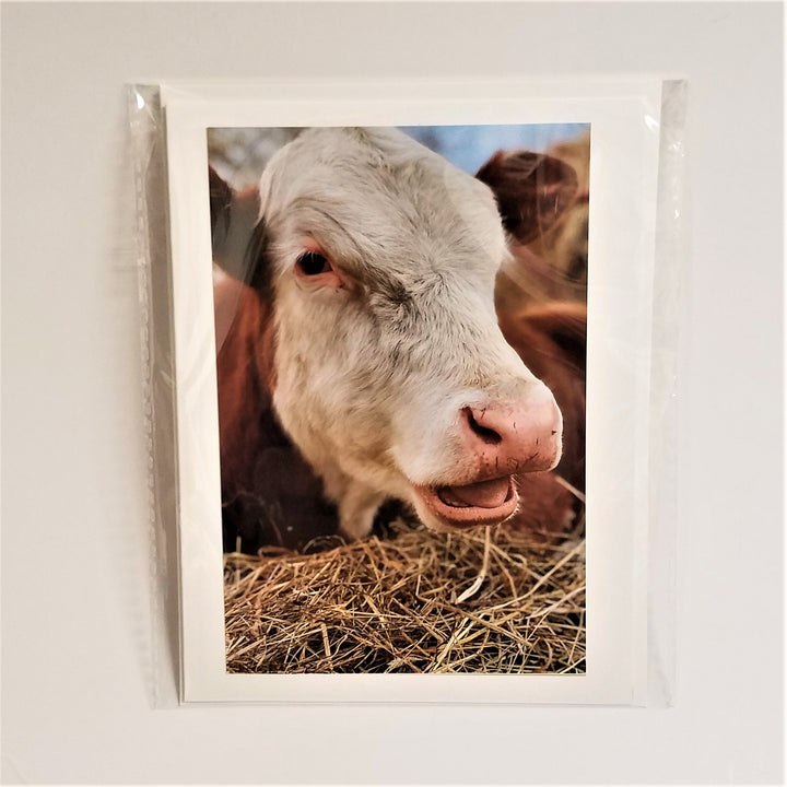 It's Just Me Photo Note Card: Just Be Cowz...