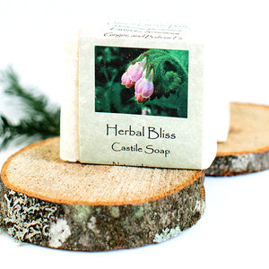 Berube Botanicals Soap north woods