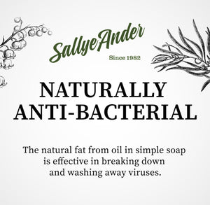 Features SallyeAnder logo and text about the anti-bacterial soap.