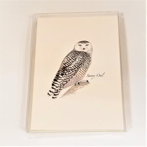 Blank Nature Note Cards