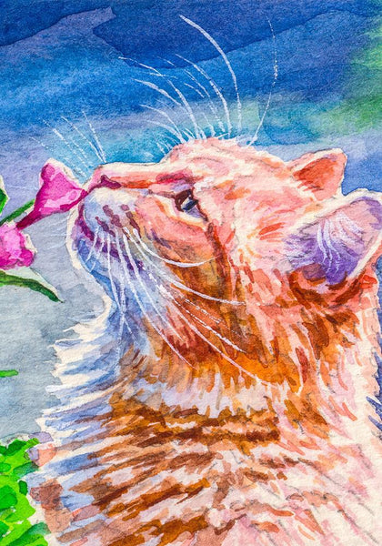 Cat Stops to Smell the Roses