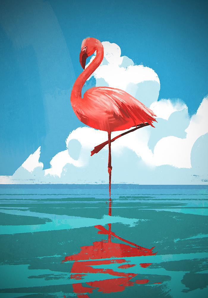 The Lone Flamingo