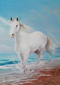 White Horse on the Shore