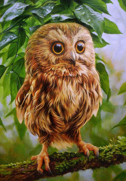 Owl In The Tree Painting Kit - ThePaintingSociety.com