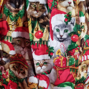 Santa Cats in Hats