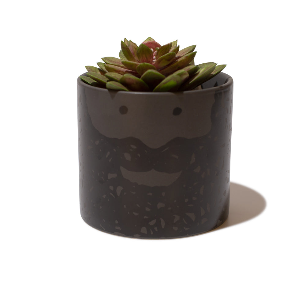 'Bernard' Large Planter