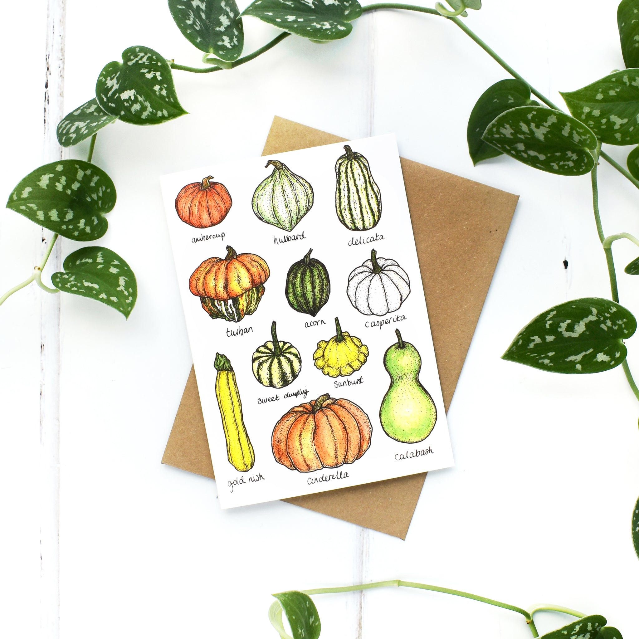 Squashes and Gourds A6 Greeting Card, Blank Inside