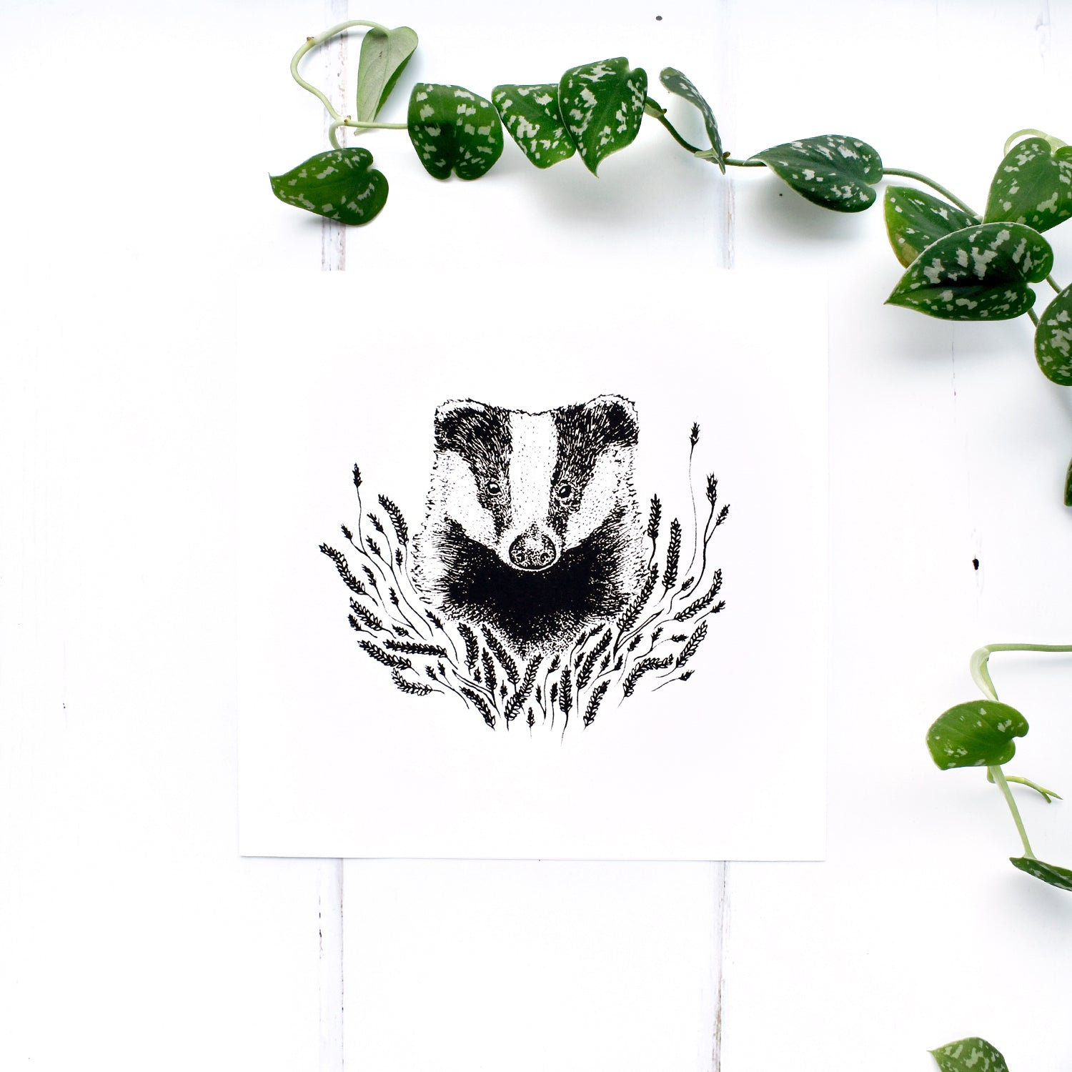 Badger and Wild Grass Black and White Screen Print
