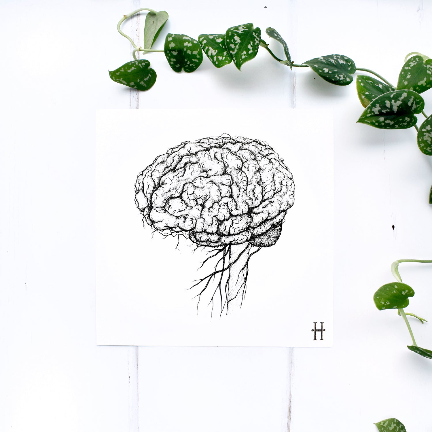Anatomical Brain Screen Print