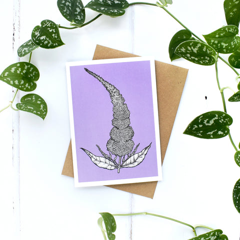 Buddleia A6 Greeting Card, Blank Inside