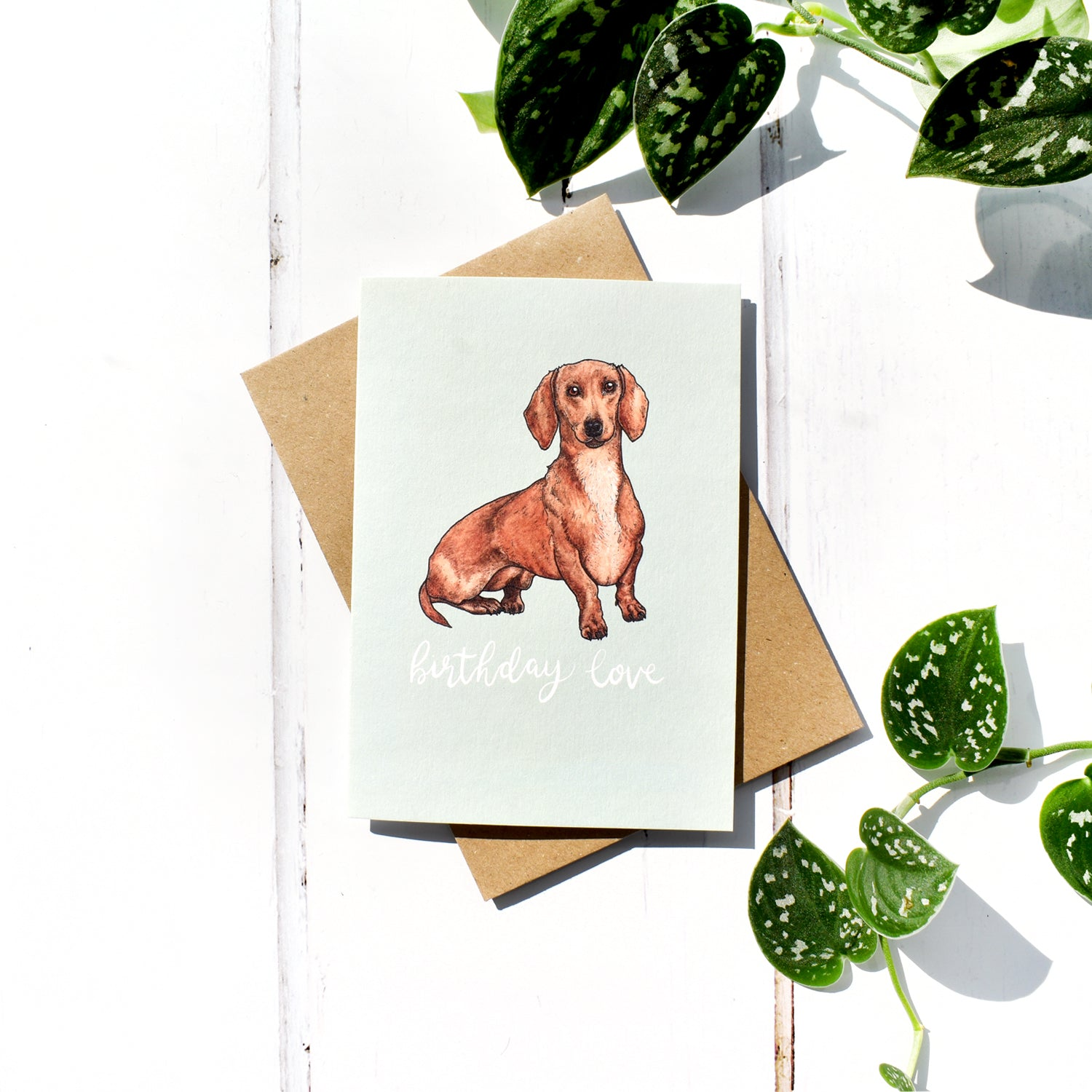 Dachshund Birthday Card, Blank Inside