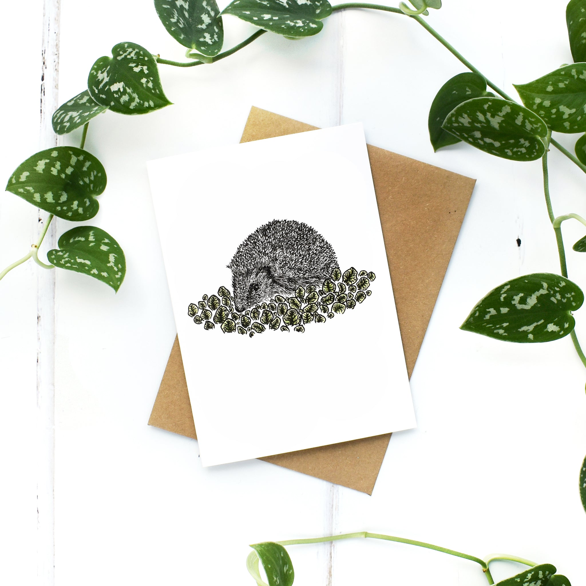 Hedgehog A6 Greeting Card, Blank Inside