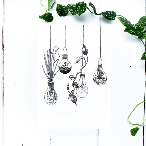 Light bulb Terrariums A4 Print