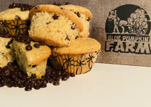 Load image into Gallery viewer, Vegan Muffins - Chocolate Chip