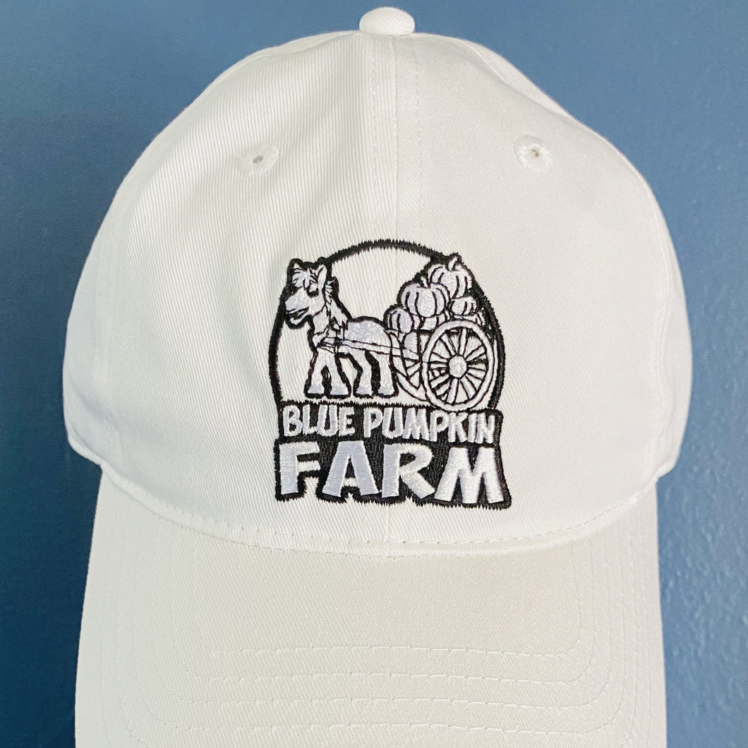 Blue Pumpkin Farm Baseball Cap Vegan Gifts