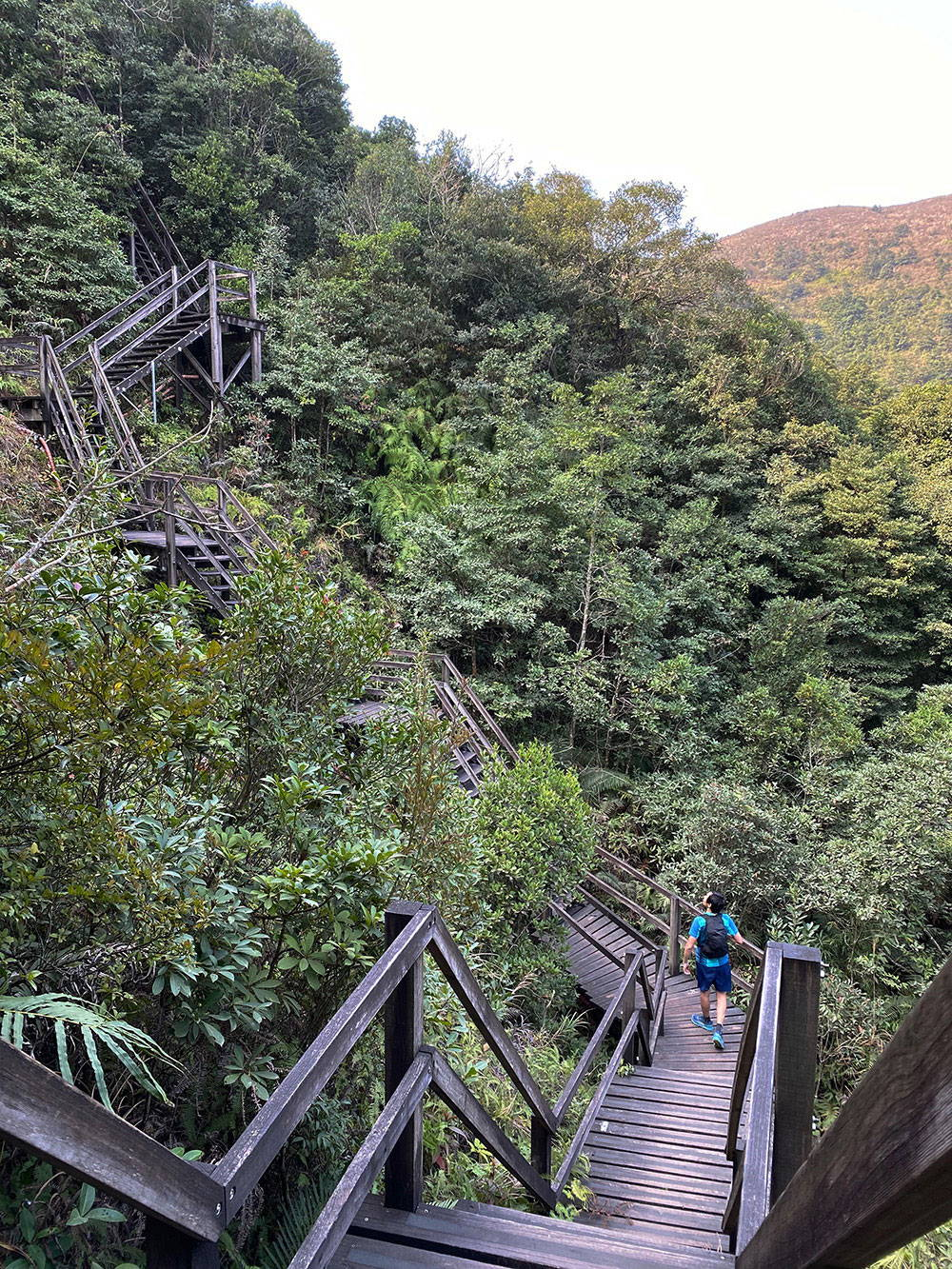 Ngong Ping Rescue Trail - Jan 2021