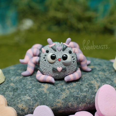 Cuddle Spider BB weebeast ✦ w/ red tigers eye life source
