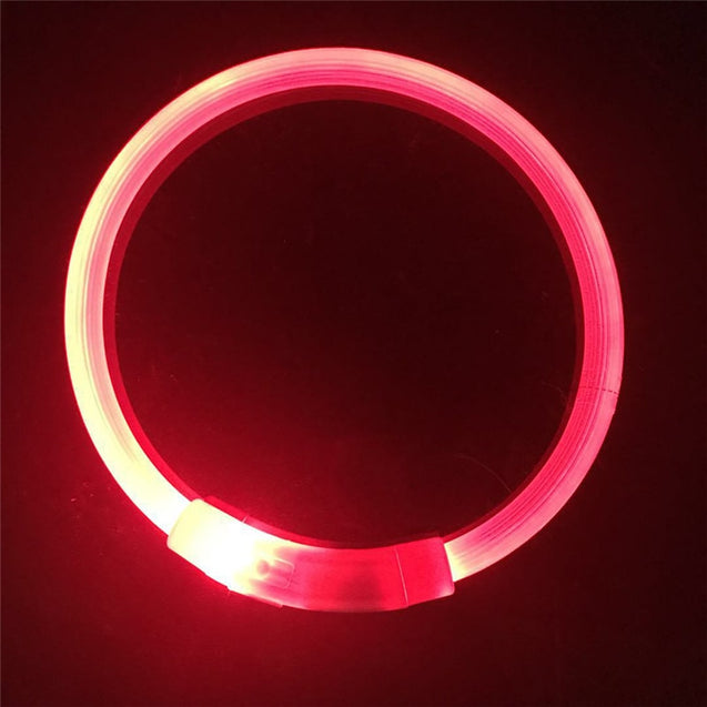 Rechargeable LED Flashing Dog Collar