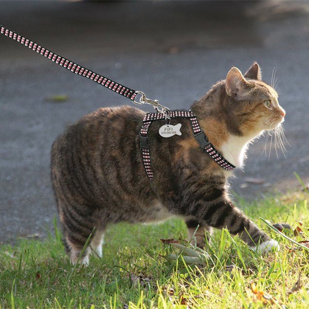 Reflective & Adjustable Cat Harness