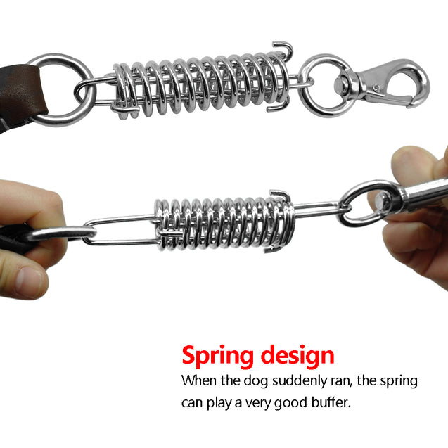 Leather Dog Leash with Spring