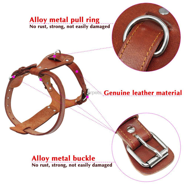 Genuine Leather Adjustable Dog Harness