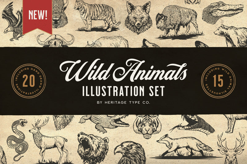 Wild Animals - Illustration Set