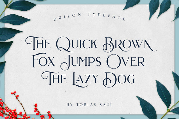 Brilon Font + Extras - serif font by Heritage Type Co.
