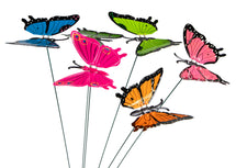 Gardenstick Butterfly 6S Assorted L15W8H6