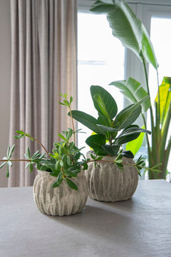 Lynn Pumpkin Pot Grey D21.5H16
