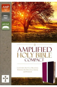 Amplified Holy Bible, Compact, Imitation Leather, Pink/Purple: Captures the Full Meaning Behind the Original Greek and Hebrew 9780310444022