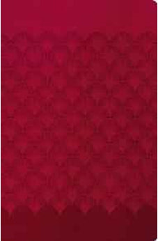 NIV, The Woman's Study Bible, Imitation Leather, Red, Indexed 9780718004132