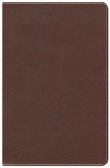 KJV Ultrathin Reference Bible, Chocolate LeatherTouch 9781433603853