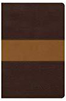 CSB Disciple's Study Bible, Brown/Tan LeatherTouch 9781462753680