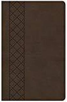 KJV Ultrathin Reference Bible, Value Edition, Brown LeatherTouch 9781462766185